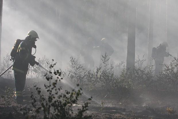 Bosbrand Plaggeweg Vierhouten